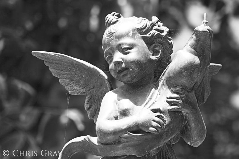 Angel and Fish.jpg