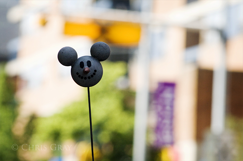 Antenna Ball On McCaul.jpg