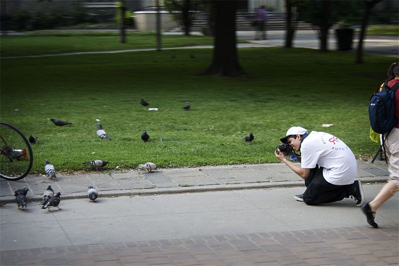 Be the Pigeon!.jpg