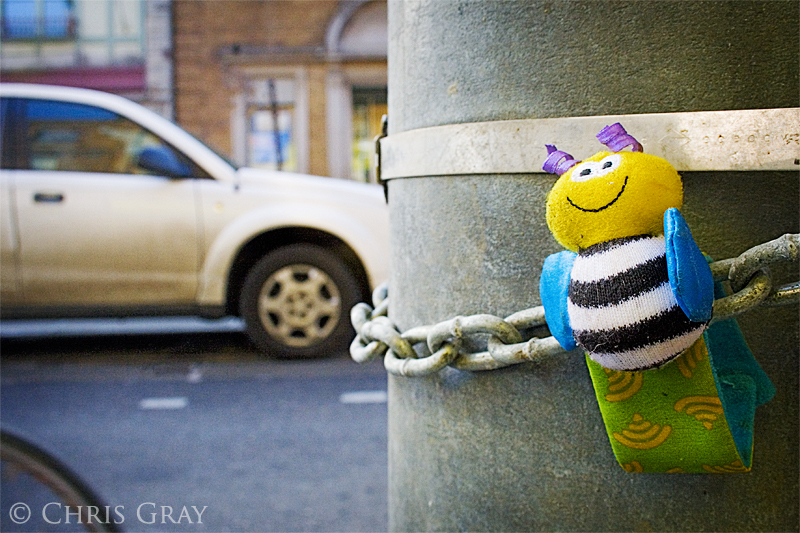 Bee on a Pole.jpg