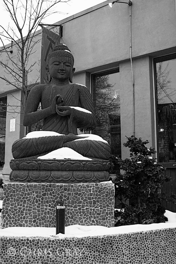 Buddha in the Snow.jpg