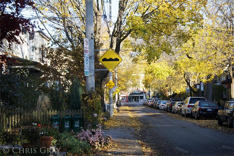 Fall on Lewis Street copy.jpg
