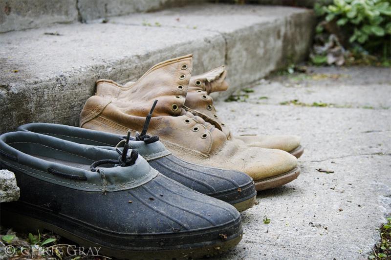 Shoes Again.jpg