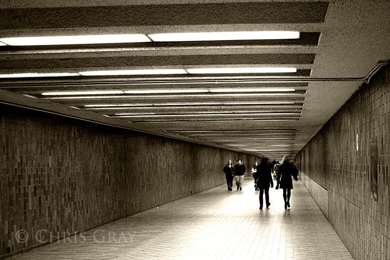 Spadina Hallway copy.jpg