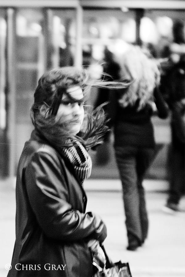 Windswept.jpg
